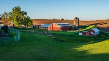 barn on green field
