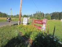 Bellingham Country Gardens - sign