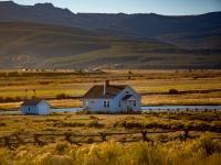 Farm in golden field