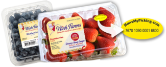 Wish Farms - blueberry strawberry clamshells